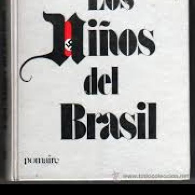 LOS NIÑOS DEL BRASIL.jpeg